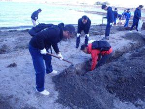 オール野島クリーンプロジェクト